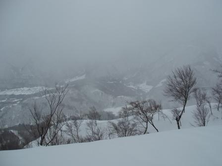 2009.02.24.810雪が良ければ・・.jpg