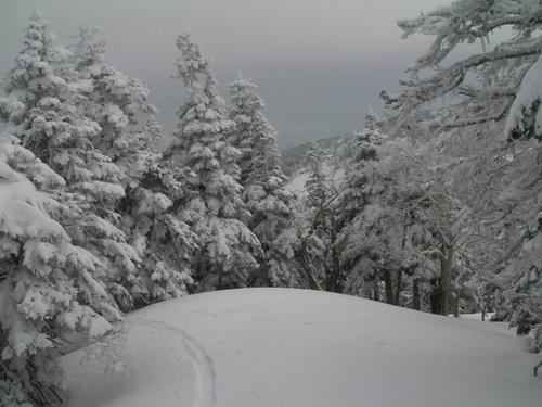 2010.2.14横前倉山 039.jpg