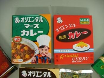 カレー2種類2.jpg